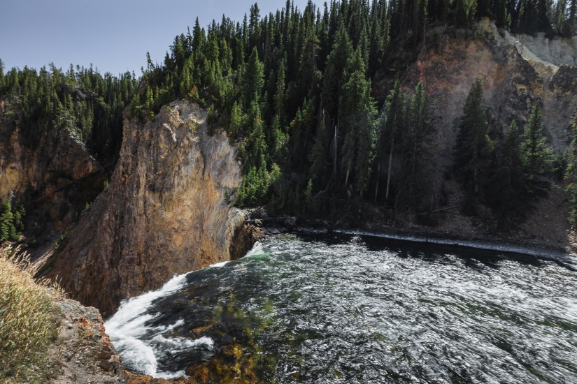 Yellowstone-9341
