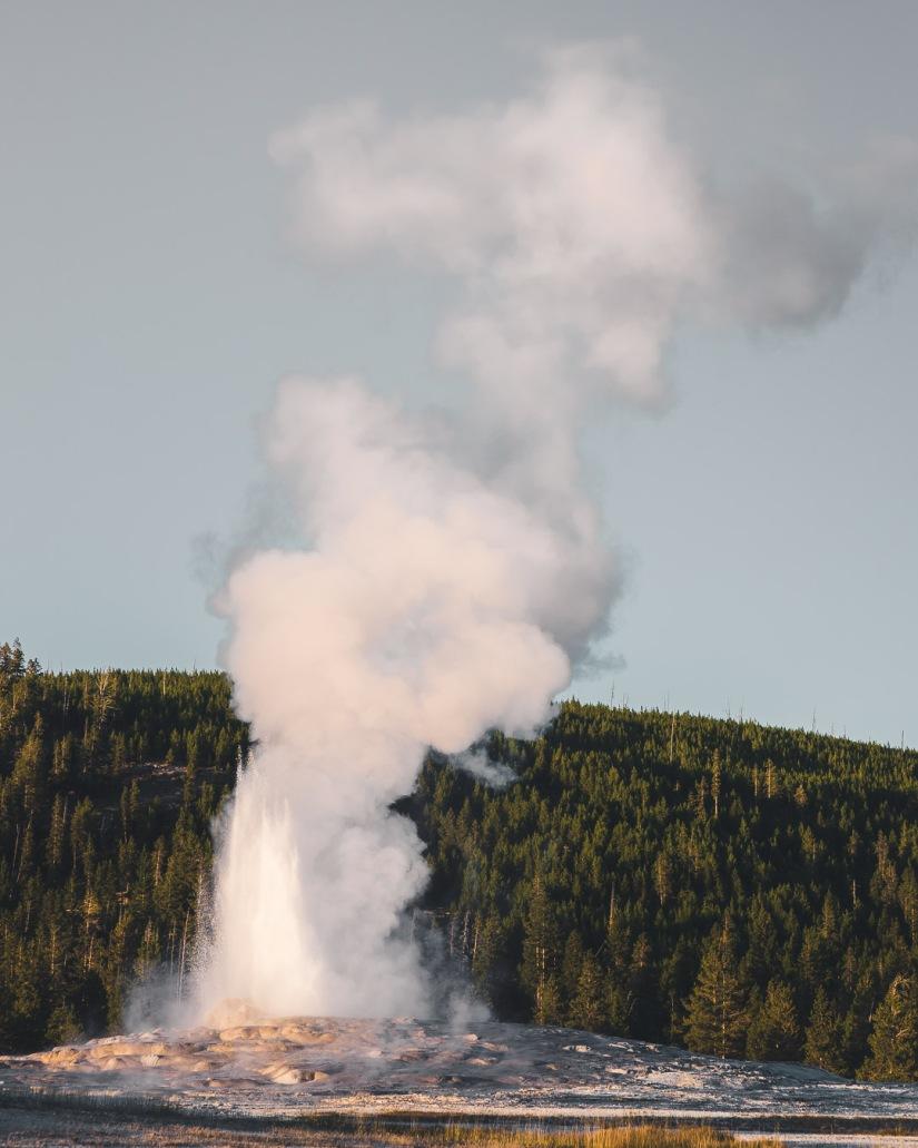 Yellowstone-9598