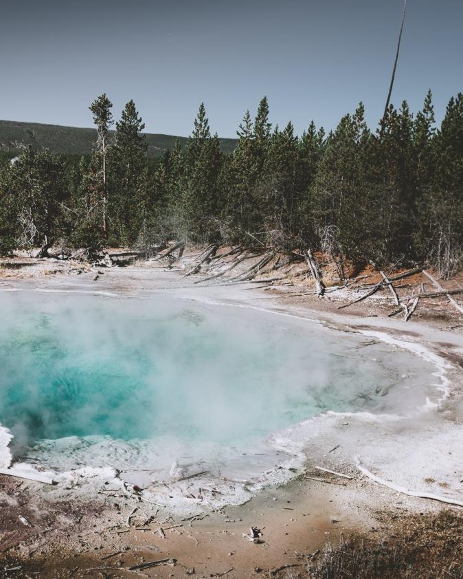 Yellowstone-9640